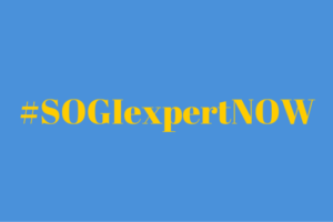628 NGOs from 151 Countries Call for a SOGI Independent Expert at the UN