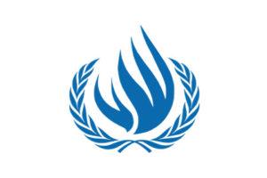 Комитету по правам человека представили позицию НПО о положении прав ЛГБТ в Беларуси
