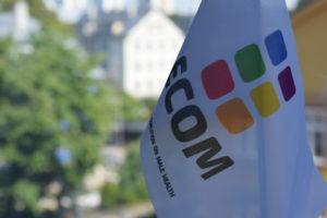 Выборы Руководящего совета ЕКОМ 2019