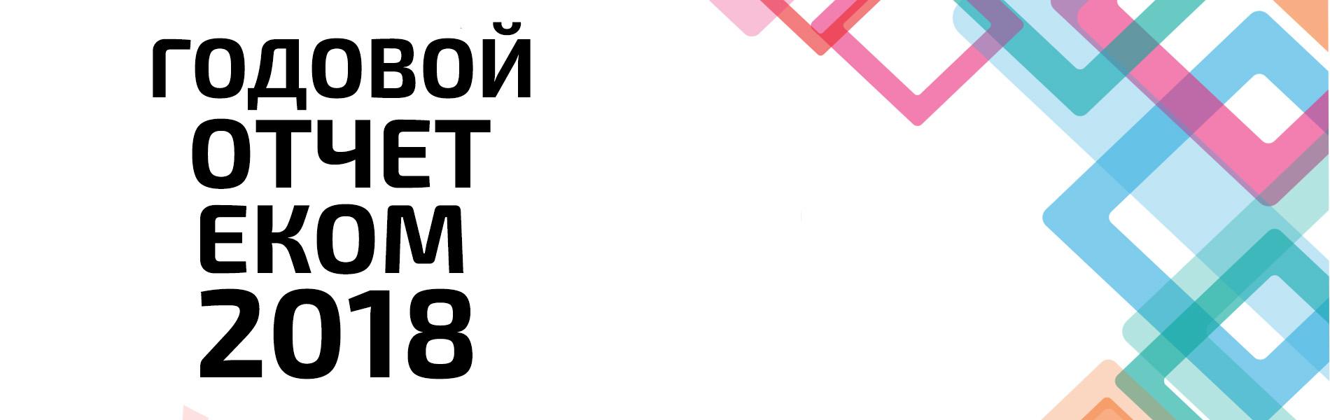 ЕКОМ представляет программный и финансовый отчет за 2018 год